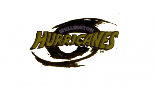 Hurricanes Logo 1996