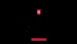 Holsten logo tumb