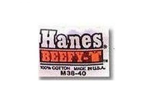 Hanes logo 1980