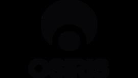 Osiris Shoes Logo tumb