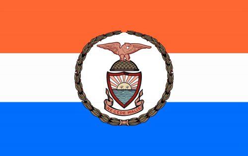 Bronx County Flag