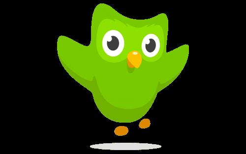 Duolingo logo 2013