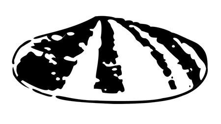 Shell logo 1900