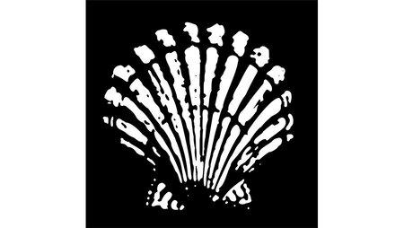 Shell logo 1904
