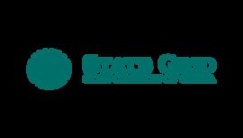 State Grid Corporation of China Logo tumb